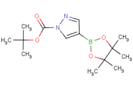 tert-butyl 4-(tetramethyl-1,3,2-dioxaborolan-2-yl)-1H-pyrazole-1-carboxylate