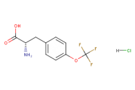 (2S)-2-amino-3-[4-(trifluoromethoxy)phenyl]propanoic acid hydrochloride